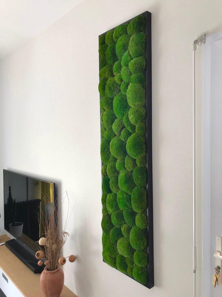 tableau-vegetal-stabilise-lere-vegetale