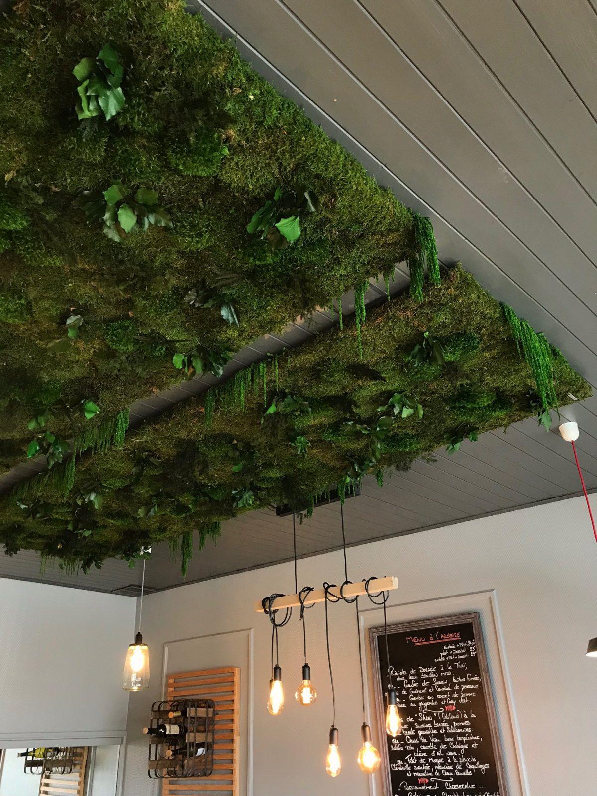 L\'ère Végétale | Murs végétaux et plantes stabilisées | Haut de gamme