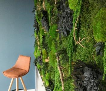 Tableau végétal stabilisé Art et Nature Paysage Show room