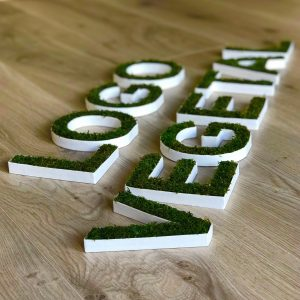 logo-vegetal-lere-vegetale