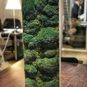 tableau-vegetal-stabilise-mousse-boule-lere-vegetale