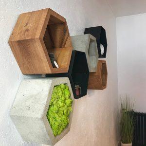 creation-lichen-stabilise-lere-vegetale