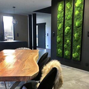 Tableau végétal dans une cuisine